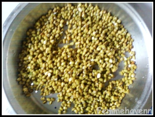 How to sprout Moong beans fast